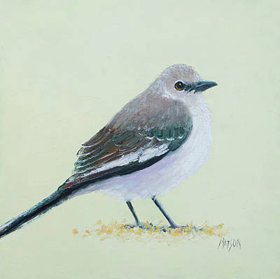 Mockingbird Painting - Northern Mockingbird by Jan Matson