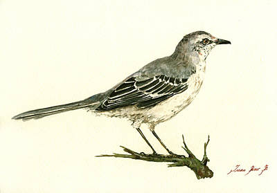 Mockingbird Painting - Northern Mockingbird by Juan  Bosco