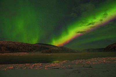 Photograph - Northern Northern Lights 3 by Phyllis Spoor
