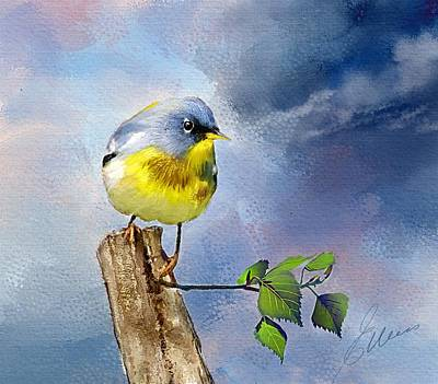 Warbler Digital Art - Northern Parula  by Elaine Weiss