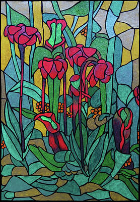 Pitcher Plants Drawing - Northern Pitcher Plant by Judie Ann