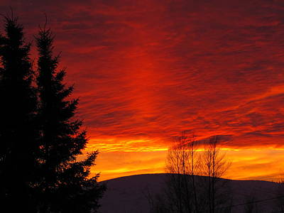 Photograph - Northern Sunset by Cheryl Charette