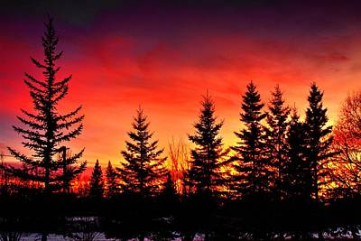 Photograph - Northern Sunset Last Light  by David Matthews