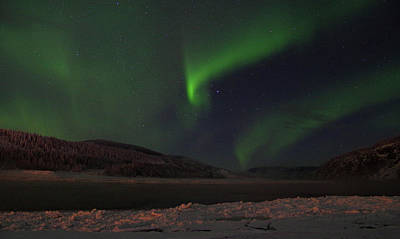 Photograph - Northern Yukon Lights 1 by Phyllis Spoor