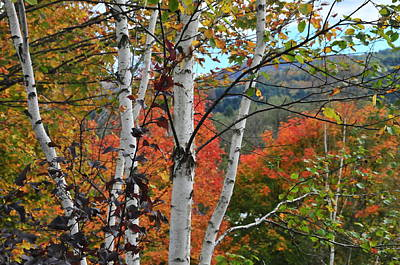 Photograph - Northfield Vermont by Brian Hoover