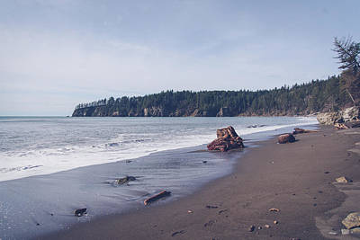 Photograph - Northwest Pacific Coast Beach by Tracie Moore