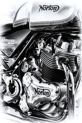 Norton Commando 961 Sport  Art Print by Tim Gainey