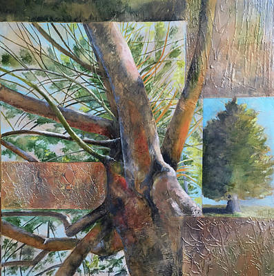 Painting - Norway Spruce by Lynn Goldstein