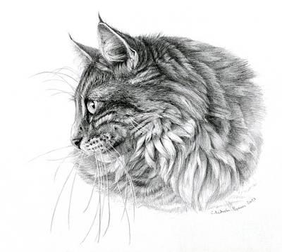 Norwegian Forest Cat Art Print by Svetlana Ledneva-Schukina