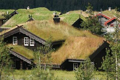 Norwegian Grass Roofs Art Print by Jessica Rose