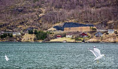 Photograph - Norwegian Village by Suzanne Luft