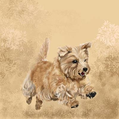 Terrier Digital Art - Norwich Terrier by Victoria Newton