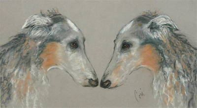 Wolfhound Drawing - Nose To Nose by Cori Solomon
