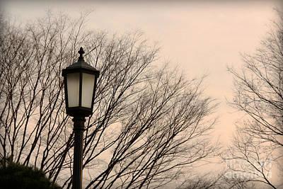 Photograph - Nostalgic Autumn by Eena Bo