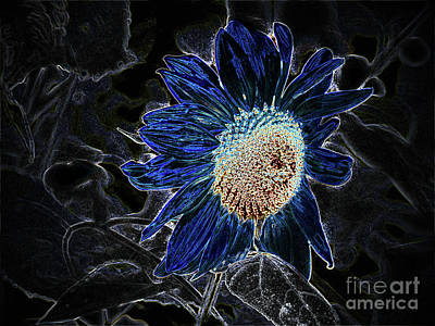 Not A Sunflower Now Art Print