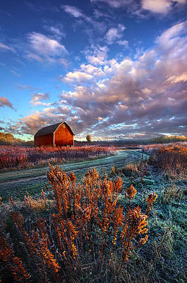 Photograph - Not All Roads Are Paved by Phil Koch