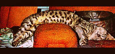Kitten Digital Art - Nothin Like A Good Nap... by Camille Reichardt