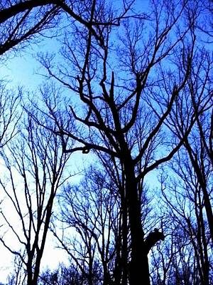 Photograph - Nothing But Blue Skies by Fareeha Khawaja