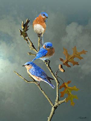 Acorn Digital Art - Nothing But Bluebirds by Spadecaller
