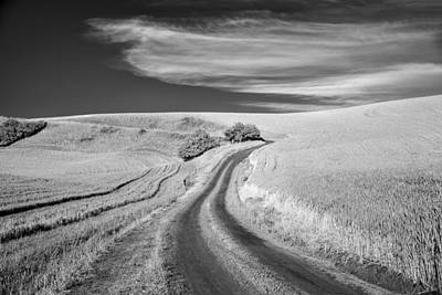 Dirt Roads Photograph - Nothing Ever Ends by Jon Glaser