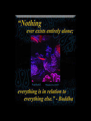 Photograph - Nothing Ever Exists Entirely Alone Everything Is In Relation To Everything Else by Tamara Kulish