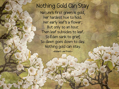 Photograph - Nothing Gold Can Stay by Leslie Montgomery
