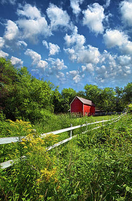 Environment Photograph - Noticing The Days Hurrying By by Phil Koch