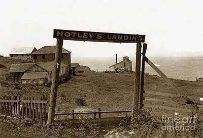 Photograph - Notleys Landing Big Sur Coast By L. S. Slevin  Circa 1914 by California Views Mr Pat Hathaway Archives
