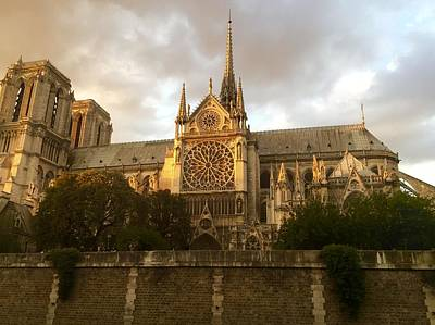 Photograph - Notre Dame Cathedral by Marty Cobcroft