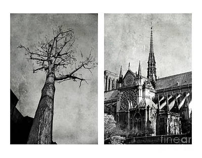 Photograph - Notre Dame De Paris by Elena Nosyreva