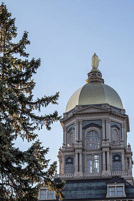 Photograph - Notre Dame Dome With Tree by John McGraw