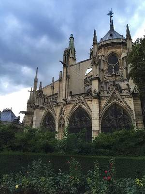 Photograph - Notre Dame Garden by Marty Cobcroft