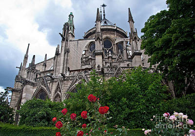 Notre Dame With Rose Garden Art Print