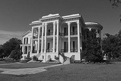 Photograph - Nottoway Plantation by Ronald Olivier