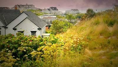 Photograph - Nova Scotia Cove by Diana Angstadt