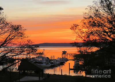 Photograph - November 1 Sunrise  by Janice Drew
