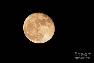 Photograph - November 2016 Super Moon by Jean Hutchison