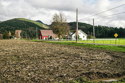 Photograph - November Corn On Skagit Farm by Tom Cochran