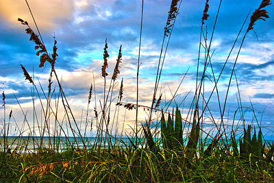 November Day At The Beach In Florida Art Print