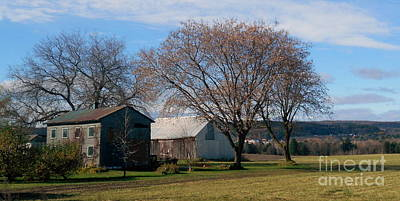 Photograph - November by Elfriede Fulda