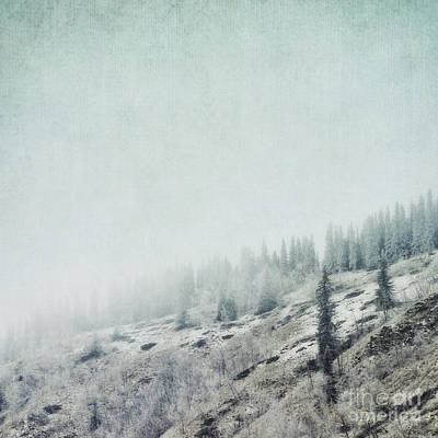 Photograph - November Fog by Priska Wettstein