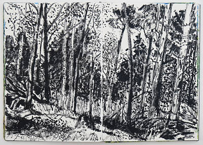 Drawing - November Forest by Martin Stankewitz