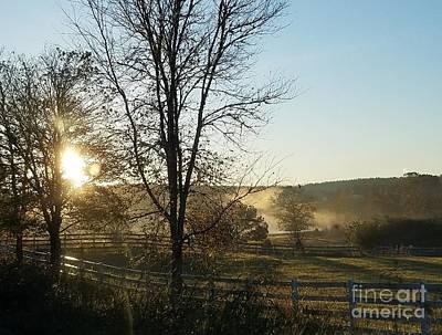 Photograph - November Morn by Maria Urso