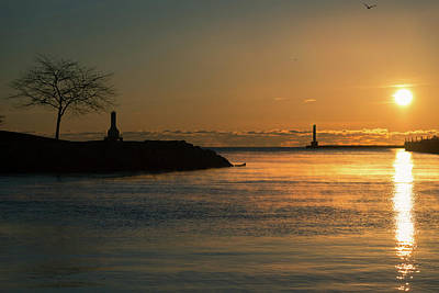 Photograph - November Sun I by James Meyer