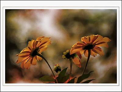 Photograph - November Sunflowers by Sheri McLeroy