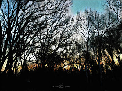 Photograph - November Sunrise by Tim Nyberg