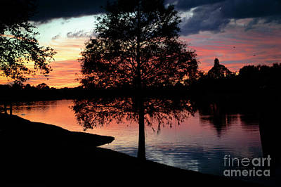 Photograph - November Sunset by Judy Hall-Folde