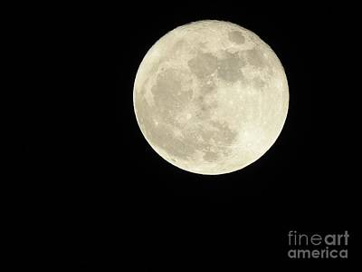 Photograph - November Super Moon by Ella Kaye Dickey