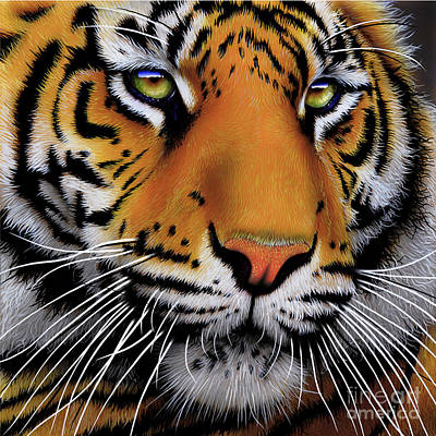 Wild Cat Painting - November Tiger by Jurek Zamoyski