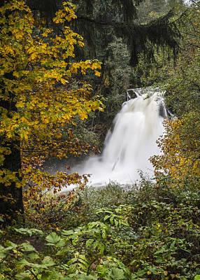Photograph - November Youngs River Falls by Robert Potts